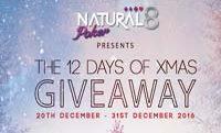 Рождественский календарь Natural8
